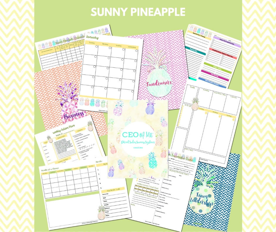 Sunny Pineapple Direct Sales Planner Toolkit Schedule System